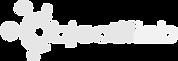 logo-OL2019NBs.png