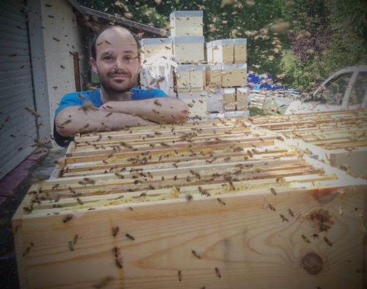 abeilles douce.jpg