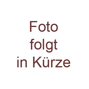 Heizstrahler von Camping Gaz für 2,0 und 2,8 Kilo Flaschen