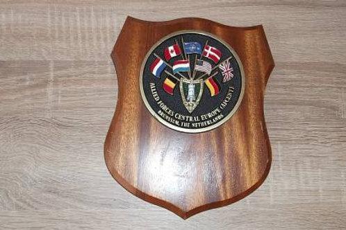 Wappen auf Holz Erinnerungstafel Allied Forces Einzelstück
