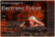 Banner Electronic Fusion E252.jpg