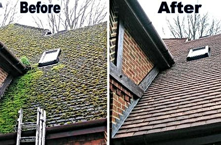 Roof Soft Wash Before and After