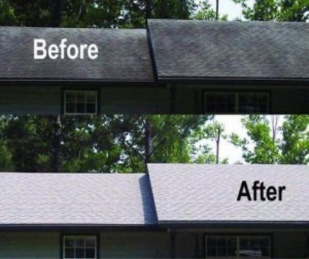 roof soft washing.jpg