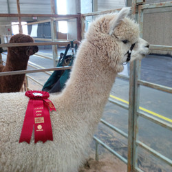 2015 Farm and Ranch show