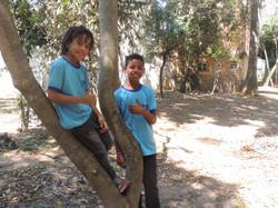 Semana da Árvore S. João de Meriti