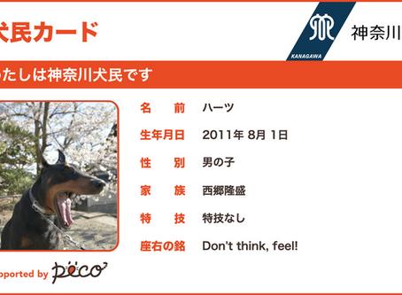 神奈川「犬民カード」が作れます