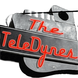 teledynes1_edited.png