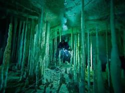 dans-cave-bahamas-skiles_52769_990x742-300x225