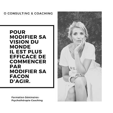 O Consulting & Coaching-julie coudor-cabinet de psycotherapie-thérapies brève-emdr-pnl-hypnose-gard-ardèche-vaucluse-coaching entreprises-cours de stratégie