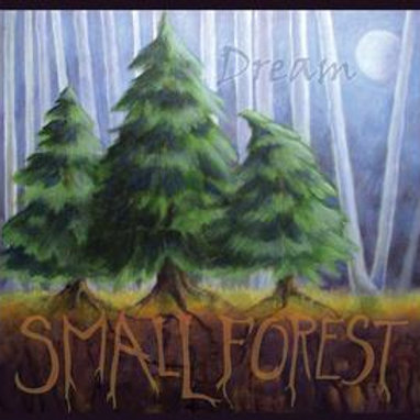 """"""" Dream"""" - Small Forest   2015 Jeanne Kuhns, Marybeth Mattson and Patrick Palmer"""