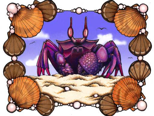Ghost Crab by Jenny