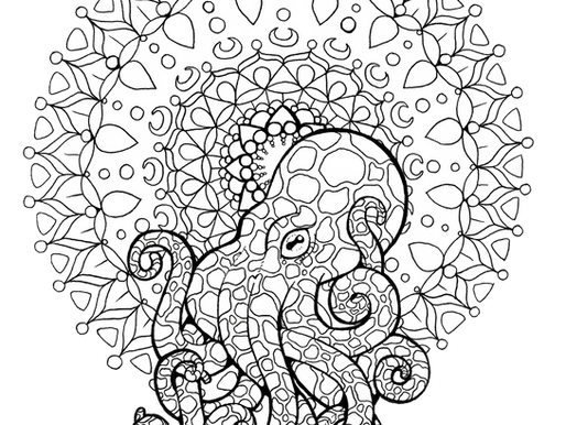 The Octopus Story
