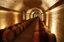 Hall-Winery-Rutherford-17.jpg