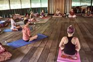 Qi Gong - Activating the Lower Dantian - Traditional Ayahuasca Plant Spirit Healing Retreats & Noya Rao Dieta