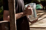 Water is Our Friend! You Will Drink Lots on Our Sangre De Grado Purgative! - Ayahuasca Healing Retreats & Noya Rao Dieta - Casa Galactica