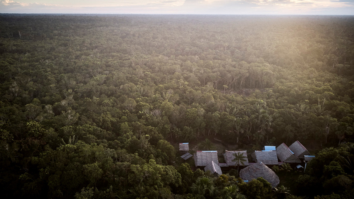 Chamisal Healing & Retreat Center - Deep in the Amazon Jungle - Casa Galactica - Best Ayahuasca Plant Spirit Healing Retreats & Noya Rao Initiation Dietas Peru