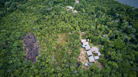 Secluded Ayahuasca Retreat Center - Deep in the Amazonian Jungle - Peru - Chamisal - Casa Galactica