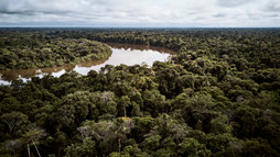 Chamisal Healing & Retreat Center in the Allpahuayo-Mishana National Reserve - Ayahuasca Retreat Center - Casa Galactica