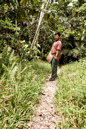 Shipibo Curandero Urias Teaching About Plant Medicines on a Jungle Walk as Part of Our 2 Week Ayahuasca Plant Spirit Healing Retreats