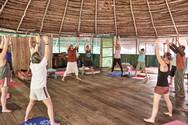 Non-duality - Transcending Duality on Our Ayahuasca Plant Spirit Healing Retreats & Noya Rao Initiation Dieta - Qi Gong Class