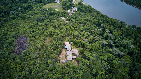 Isolated Ayahuasca Retreat Centre - Deep in the Jungle - Peru - Chamisal - Casa Galactica