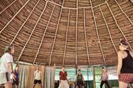 Qi Gong & Plant Medicine - Ayahuasca Plant Spirit Healing Retreats & Noya Rao Initiation Dietas
