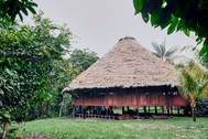 Maloca and Surrounding Ground at Chamisal - Home of Life-changing Ayahuasca Retreats and Noya Rao Dietas