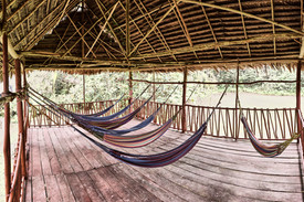 Hammock Area - Relax at Our Ayahuasca Plant Spirit Healing Retreats and Noya Rao Dietas as You Look Out to the Amazon Rainforest