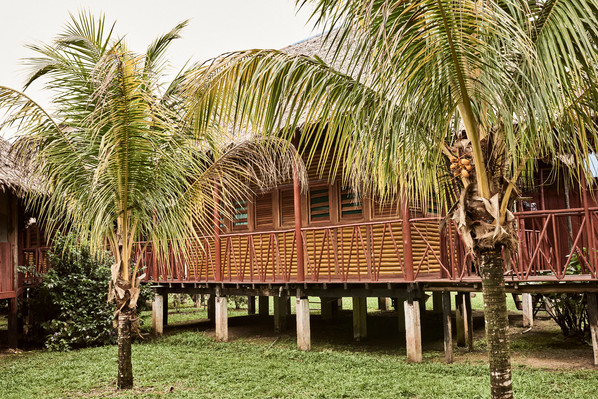 Immersed in Nature - Chamisal Retreat Center - Your Home in the Jungle - Casa Galactica