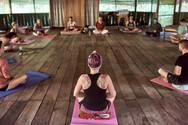Qi Gong - Ayahuasca Plant Spirit Healing Retreat Peru - Additional Activity