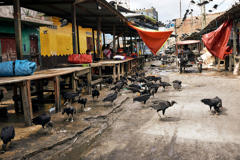 Belen Market - Iconic Iquitos Market Where You Can Buy Traditional Shamanic Supplies and Tools - Ayahuasca Retreats Iquitos