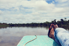 View From the Fast Boat in the Amazon Jungle - Nanay River - en Route to Our Ayahuasca Retreat Center outside of Iquitos Peru