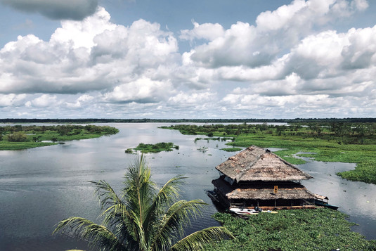 Amazon River - Before You Enter the Jungle, Where to Visit in Iquitos? Tasty Restaurants and Ayahuasca Diet Food