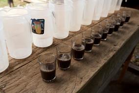 Sangre De Grado Internal Uses - Stomach Cleanse! - Ayahuasca Plant Spirit Retreat & Noya Rao Initiation Dieta!