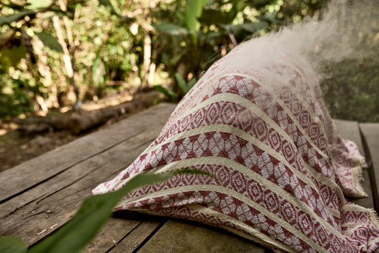 Spiritual Healing, Shipibo Plant Medicine Palo Santo Smoke Bath - Ayahuasca Plant Spirit Healing Retreat - Casa Galactica