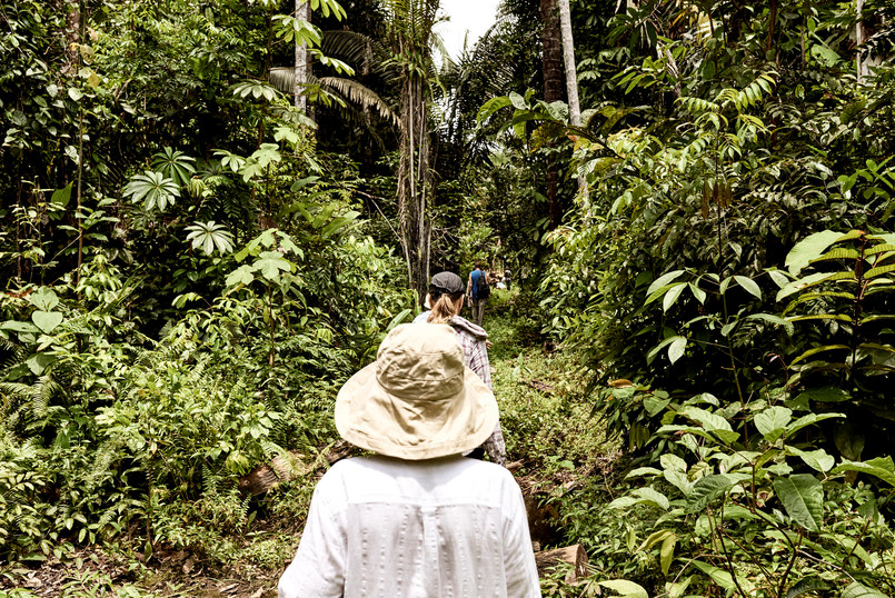 Jungle Walk - Exploring the Amazon Rainforest on our Shipibo Ayahuasca Plant Spirit Healing Retreat in Peru - Casa Galactica