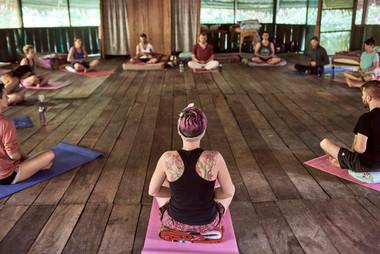 Grounding Practices with Ayahuasca - Combining Ancient Wisdom Traditions - Ayahuasca Plant Spirit Healing Retreats & Noya Rao Initiation Dietas
