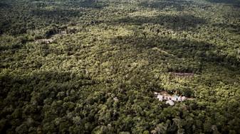 Chamisal Ayahuasca Retreat Center - Deep in the Amazon Rainforest - Noya Rao Dietas & Ayahuasca Retreats- Peru - Casa Galactica