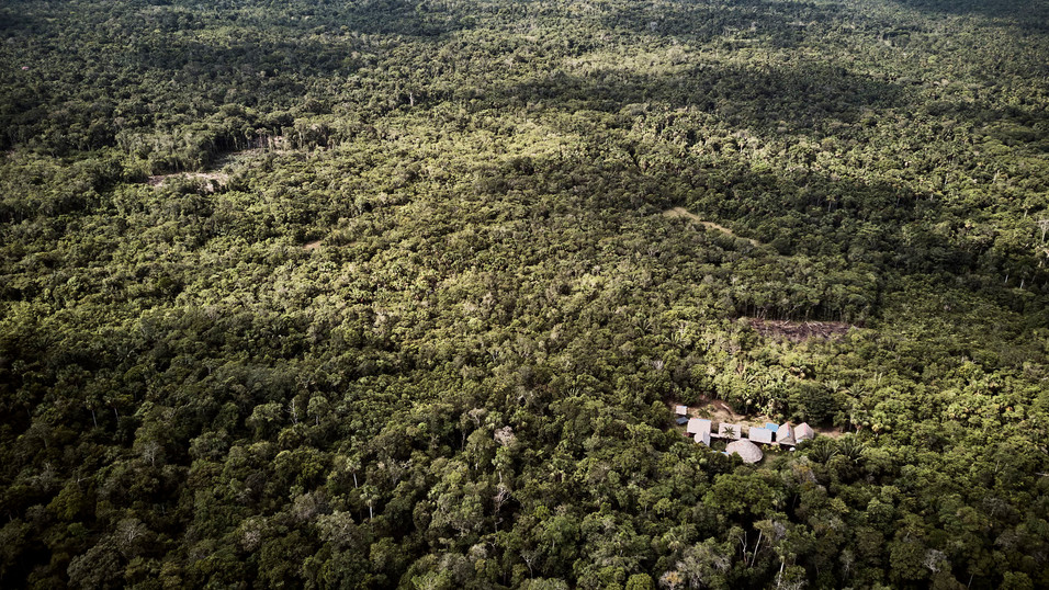 Chamisal Ayahuasca Retreat Center - Deep in the Amazon Rainforest - Noya Rao Dietas & Ayahuasca Retreats- Peru - Casa Galactica