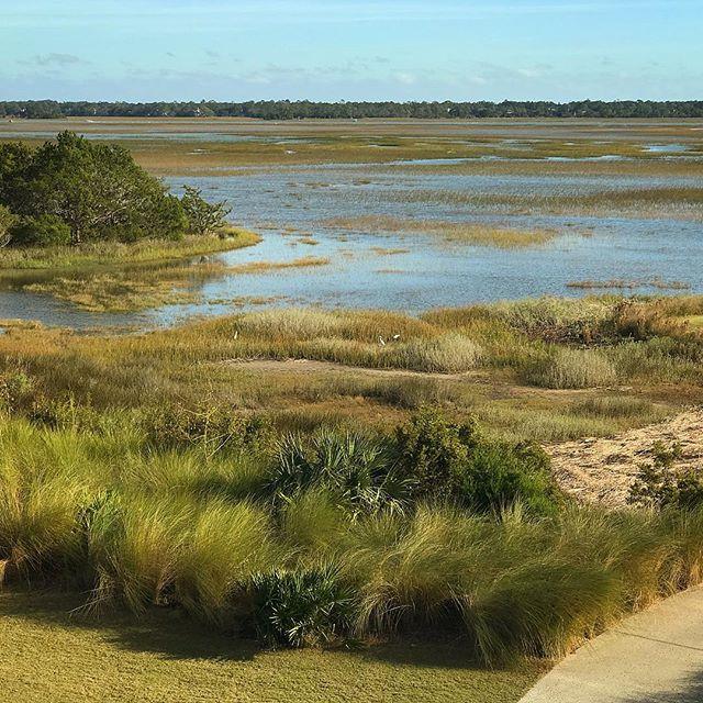 Marsh Haven