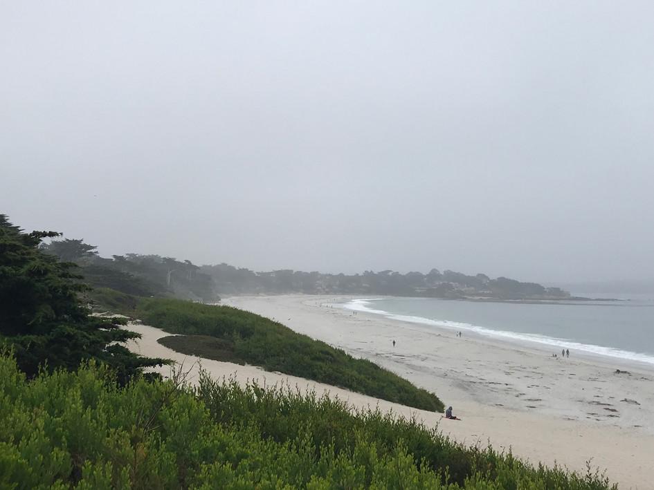 Wet, West Coast