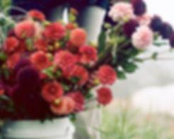 Flowers+in+bucketsm.jpg