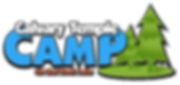 CT Camp Logo.png