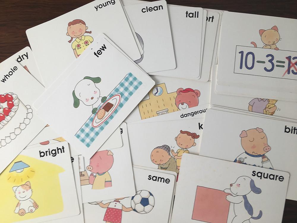 Shichida Flashcards that I bought from Shichida School