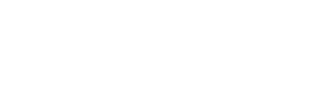 Axiology Labs Logo white.png