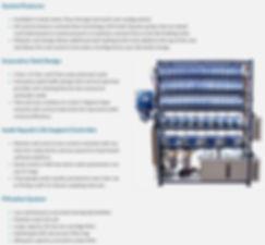 zebrafish system features.jpg