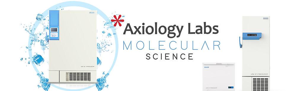 molecular slide.jpg