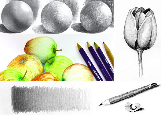 Sketch of cirulatobjects in pencil, fruit, flowers and shading