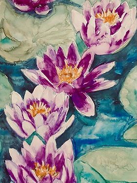 watercolour painting of waterlillies, purple and white, pond flora