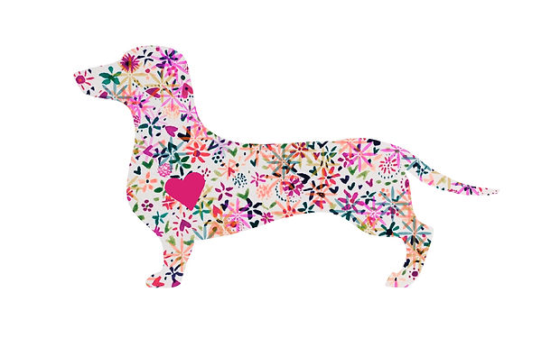 watercolour painting of a silhouette of a sausage dog, in pink wit hearts ad flowers.